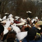 Pillow Fight 2010 (NYC) – Review