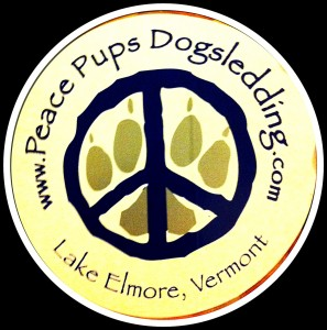 Peace Pups Dogsledding