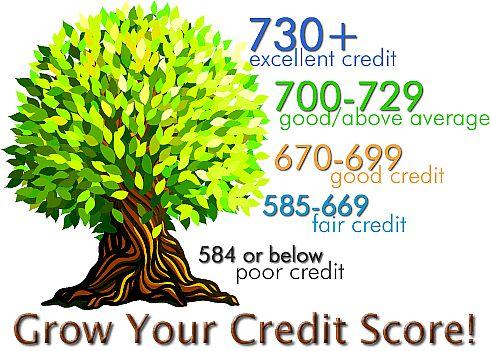 credit score tree chart
